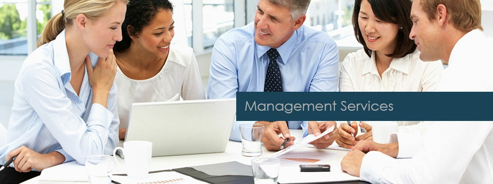 Hans du Plessis Accountants Incorporated | Management Services